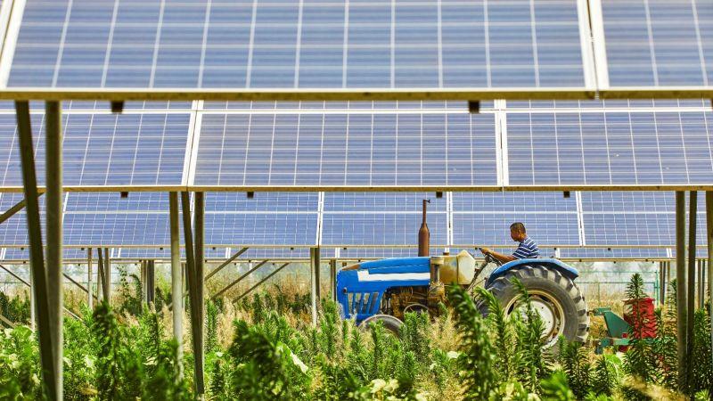 Landwirt fährt mit Traktor auf Feld mit Solarmodulen