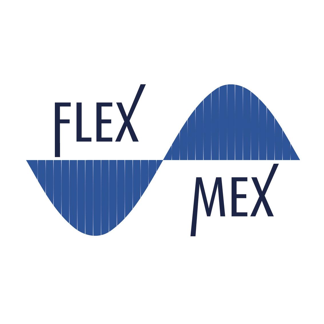 Logo FlexMex