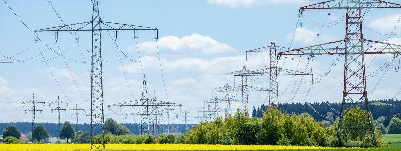 Freileitungen in Natur: Der Bereich unter den 380kV-Leitungen wird landwirtschaftlich für Biomasseerzeugung genutzt.